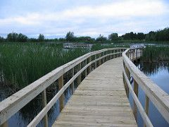 Walkway in Sackville, New Brunswick